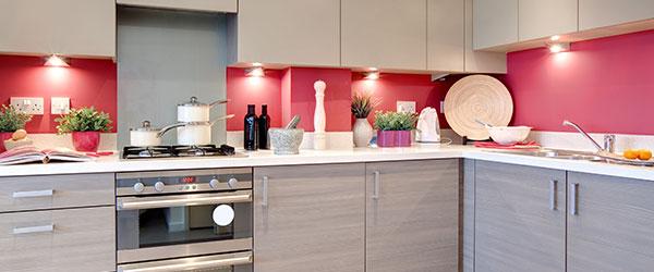 Carol Krell - Kitchen Image